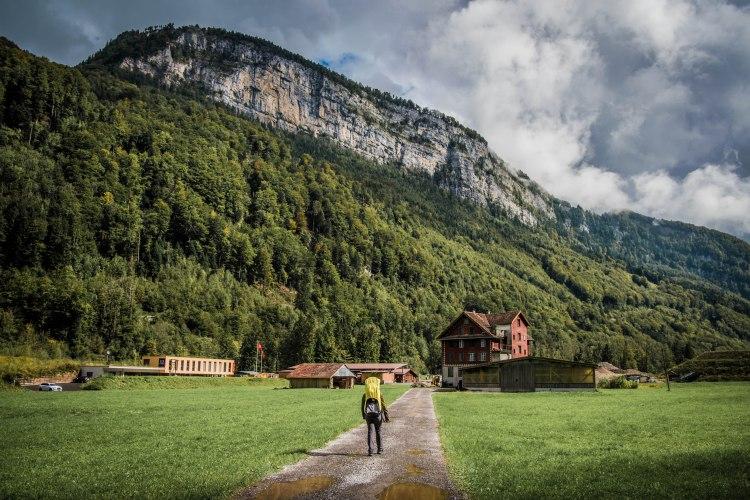 Swiss Family Purler 1098 - 20150920