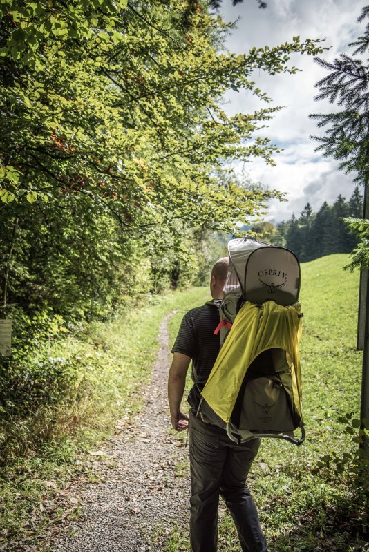 Swiss Family Purler 1105 - 20150920