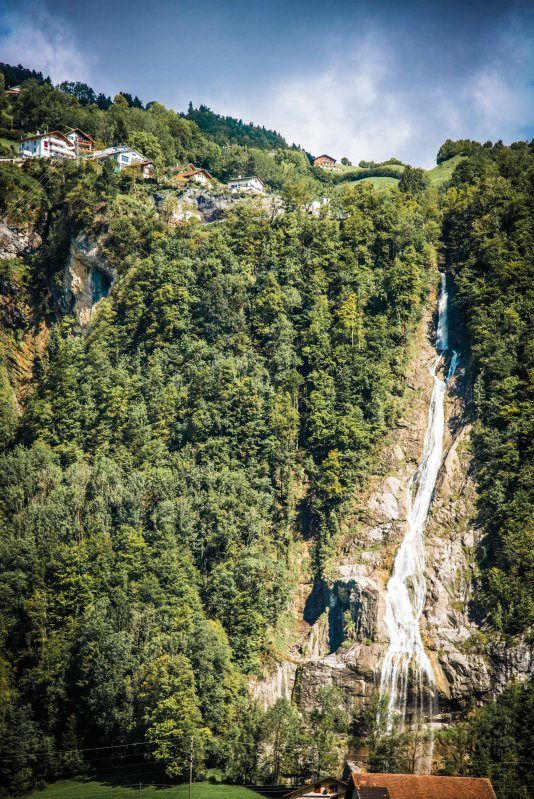 Swiss Family Purler 1153 - 20150920