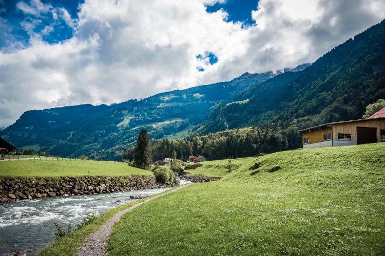 Swiss Family Purler 1157 - 20150920
