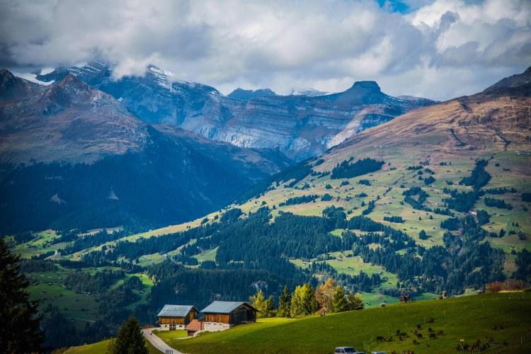 Alpabzug Day0152 - 20151003