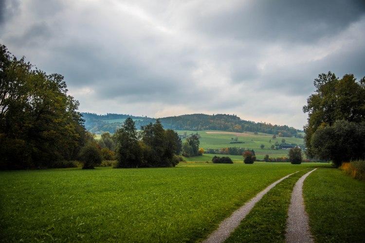 Fall in Rotkreuz 0128 - 20151011