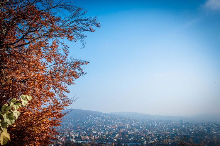 Zurich 0031 - 20151102