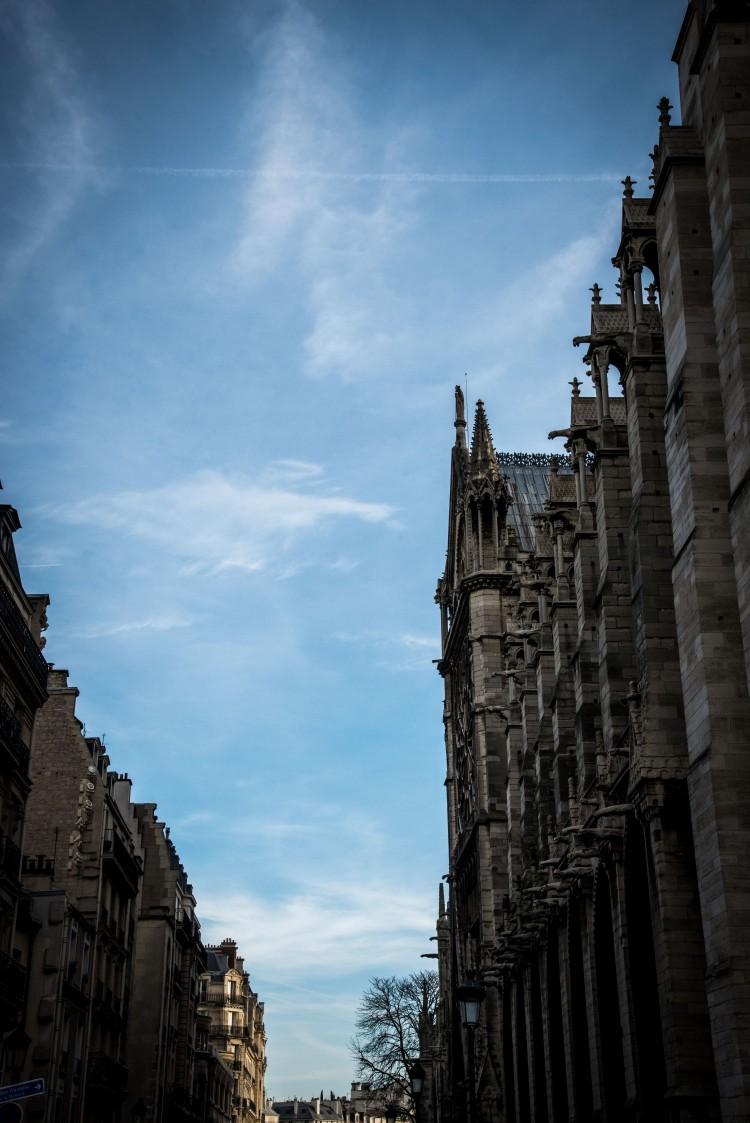 Dijon 0514 - 20151220