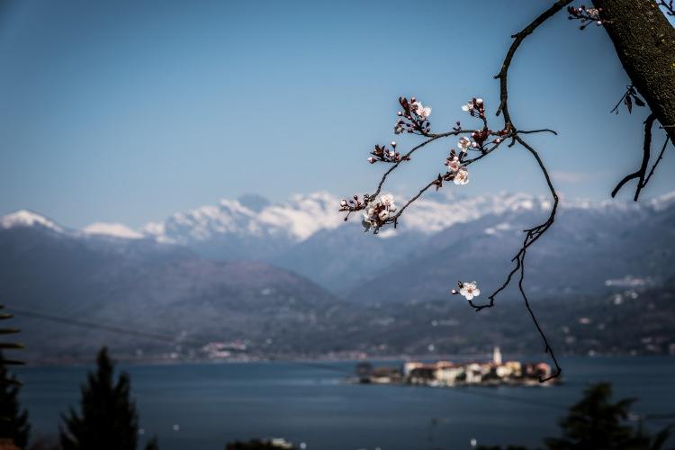 Lago Maggiore 0016 - 20160313