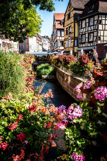 Colmar with Ann, Doru & Seb 0137 - 20160902