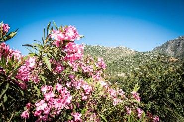 Crete, Greece-131