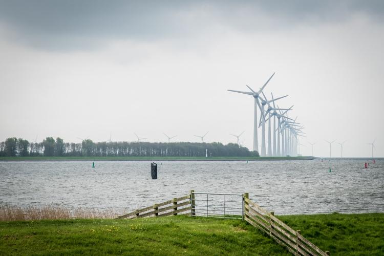 Friesland-017